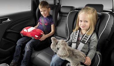 Car seat limousine service